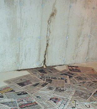 guardian basement waterproofing inc