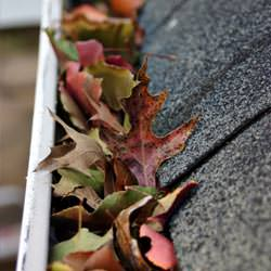 Clogged gutters filled with fall leaves  in Regina